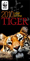 Year of the Tiger banner, available on WWF's Year of the Tiger downloads page
