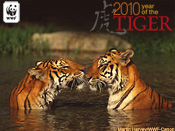 2010 Year of the Tiger E-card