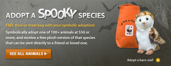 Adopt a Spooky Species