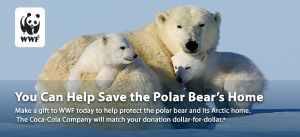 can we save the polar bears Two polar bears meet on arctic sea ice north of alaska, as captured by a  there  is only one step that can permanently protect the polar bear.