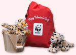 Couple of Wild Cats adoption kit